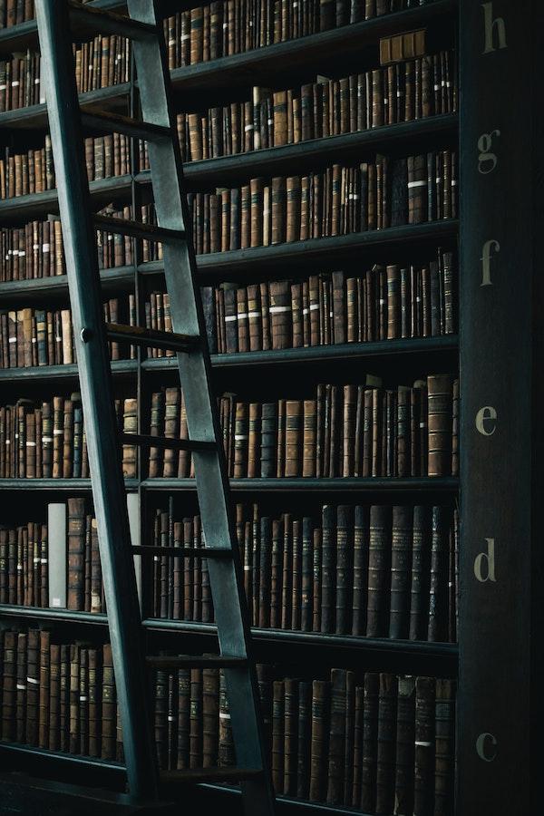 biblioteca_berica_santuario